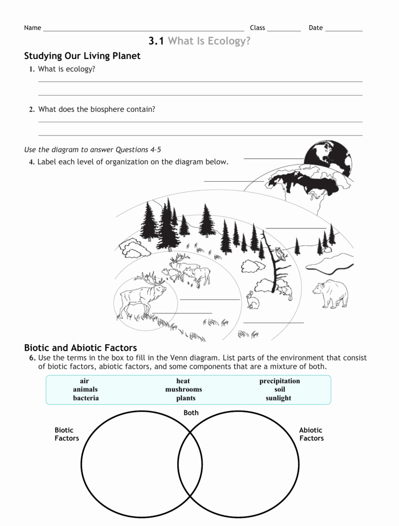Biotic and Abiotic Factors Worksheet New 3 Review Worksheet