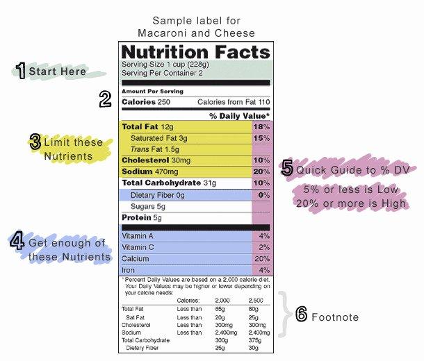 Blank Nutrition Label Worksheet New Nutrition Label Worksheet