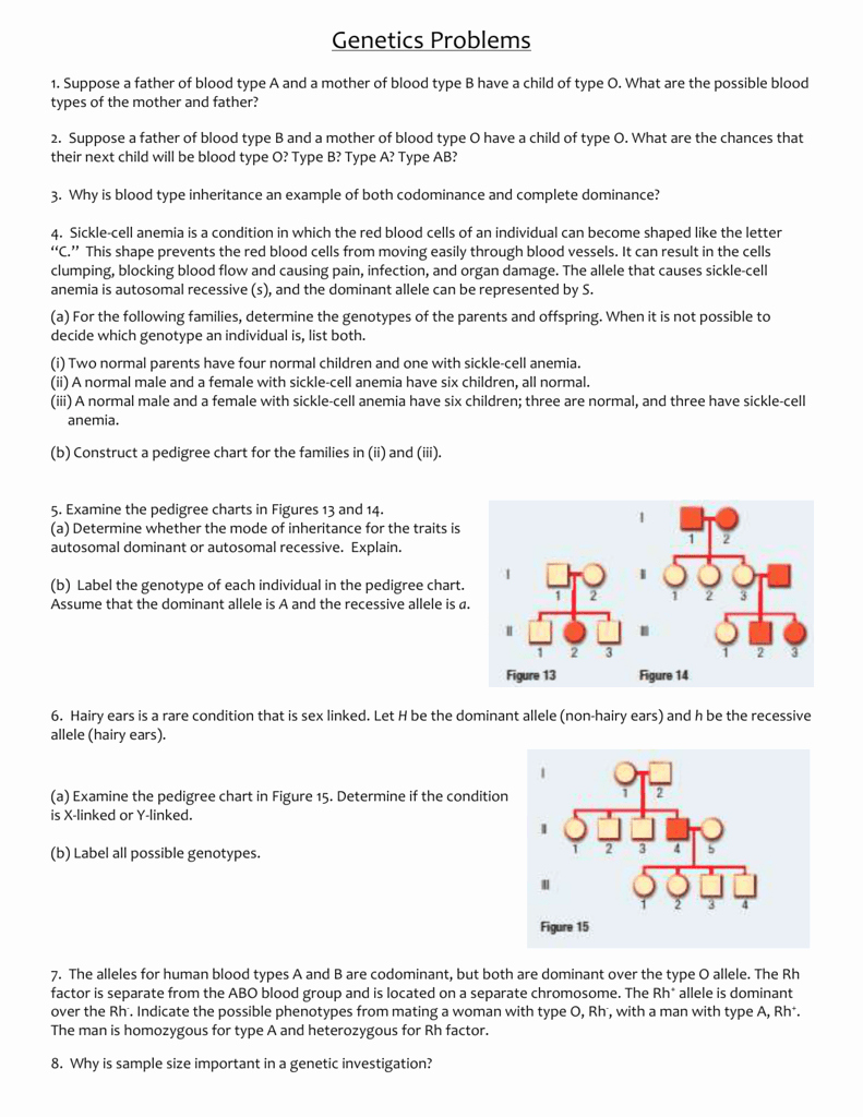 Blood Type and Inheritance Worksheet Best Of Genetics Problems Worksheet