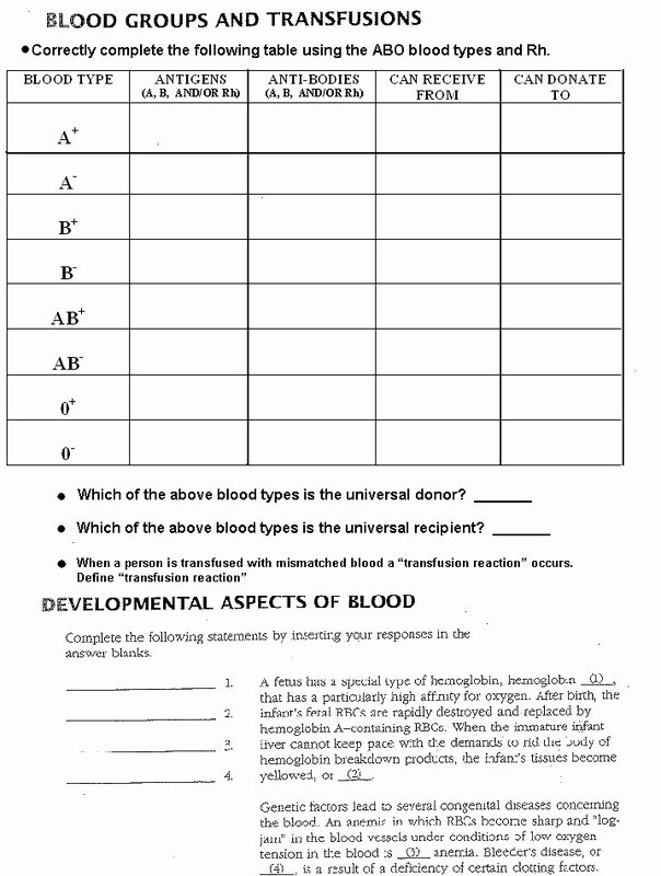 Blood Type and Inheritance Worksheet Lovely 16 Best Of Blood Type Worksheet Answer Key