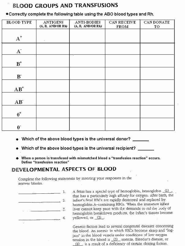 Blood Type and Inheritance Worksheet Lovely Codominance Worksheet Blood Types Answers