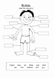 Body Parts In Spanish Worksheet Awesome 21 Awesome Label the Parts Of the Body Worksheet for Kids