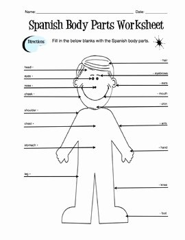 Body Parts In Spanish Worksheet Awesome Spanish Body Parts Label Worksheet & Answer Key by Sunny