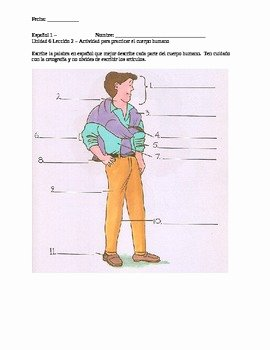 Body Parts In Spanish Worksheet Beautiful Label the Parts Of the Body Face In Spanish Worksheet by