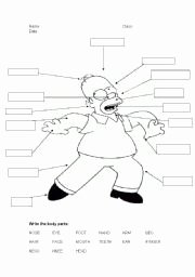 Body Parts In Spanish Worksheet Fresh Parts Of the Body — 14 Puzzle Packet