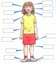 Body Parts In Spanish Worksheet Lovely 1000 Images About Spanish Worksheets for W&e On Pinterest