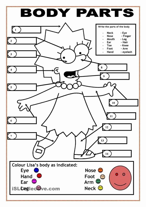 Body Parts In Spanish Worksheet Lovely Body Parts English Pinterest