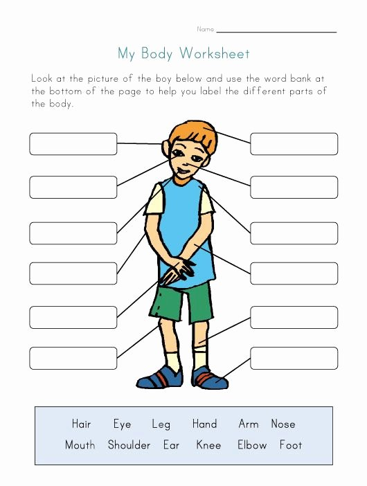 Body Parts In Spanish Worksheet Lovely Naming Parts the Body Worksheet