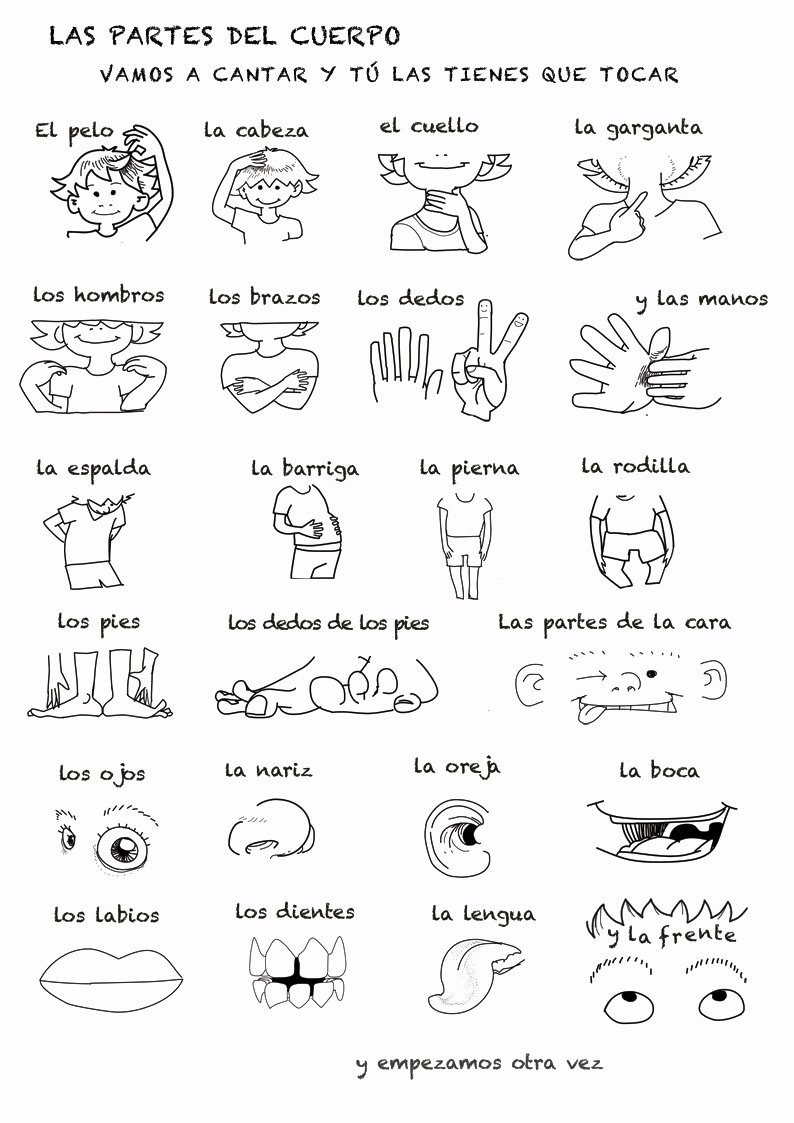 Body Parts In Spanish Worksheet Luxury Spanish Language song About Parts Of the Body