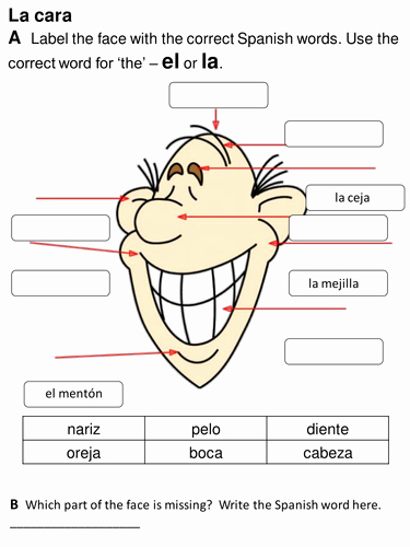 Body Parts In Spanish Worksheet New Face and Parts Of the Body Spanish Y4 by Rhawkes