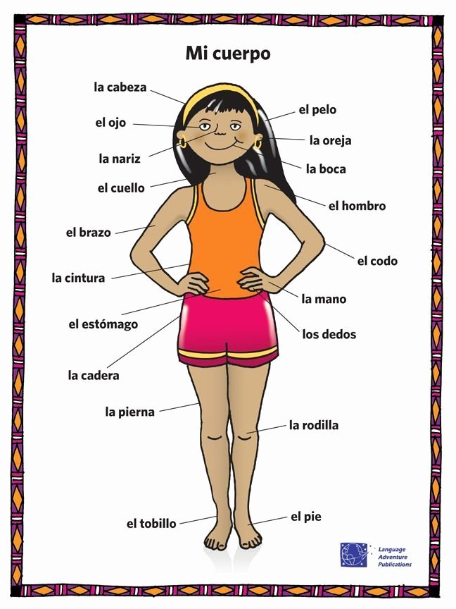 Body Parts In Spanish Worksheet New Image Result for Body Parts In Spanish