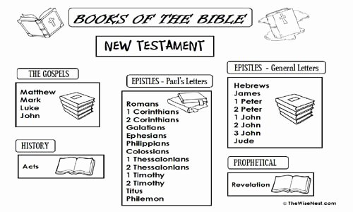 Books Of the Bible Worksheet Best Of Books Of the Bible the Wise Nest