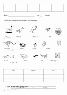 Boyle's Law Worksheet Answers Lovely English Worksheet How Animals Move