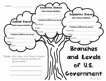 Branches Of Government Worksheet Pdf Fresh Branches and Levels Of Government Tree Graphic organizer