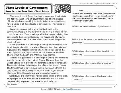 Branches Of Government Worksheet Pdf Inspirational Three Levels Of Government