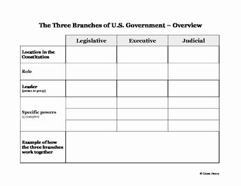 Branches Of Government Worksheet Pdf Lovely Three Branches Of U S Government Graphic organizer by