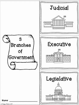 Branches Of Government Worksheet Pdf Unique Branches Of Government by Peggy Means Primary Flourish