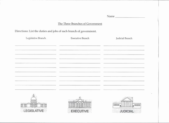 Branches Of Government Worksheet Unique 3 Branches Of Government Activity