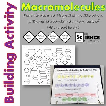 Building Macromolecules Worksheet Answers Elegant Macromolecules Building Activity for Middle and High
