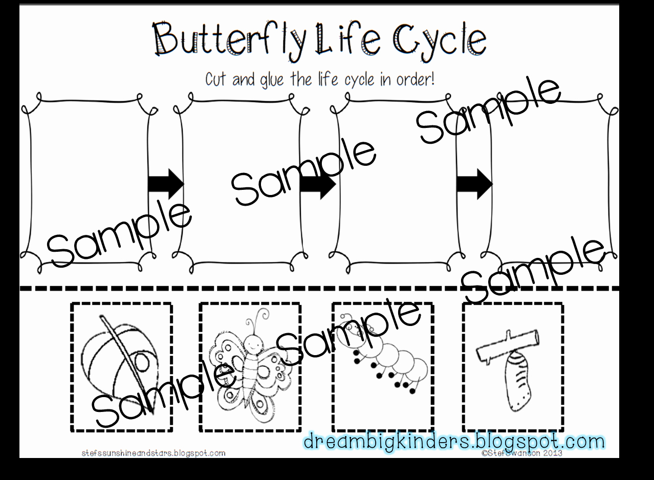 Butterfly Life Cycle Worksheet Best Of Dream Big Kinders butterfly Life Cycle Nonfiction