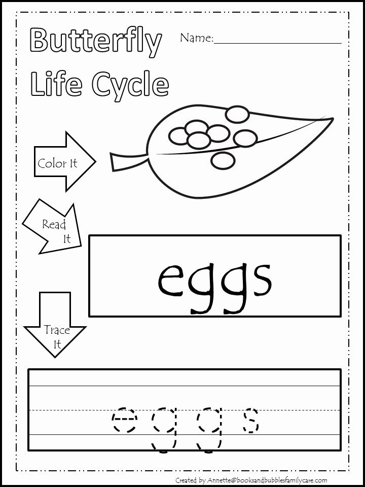 Butterfly Life Cycle Worksheet Inspirational butterfly Life Cycle Preschool Printable