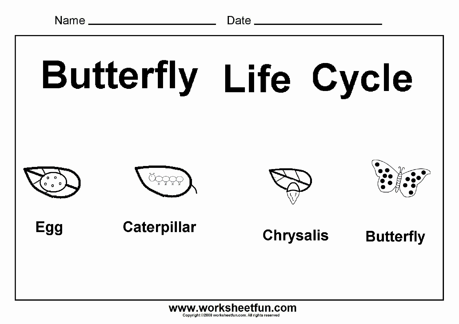 Butterfly Life Cycle Worksheet New butterfly Life Cycle – E Worksheet Free Printable
