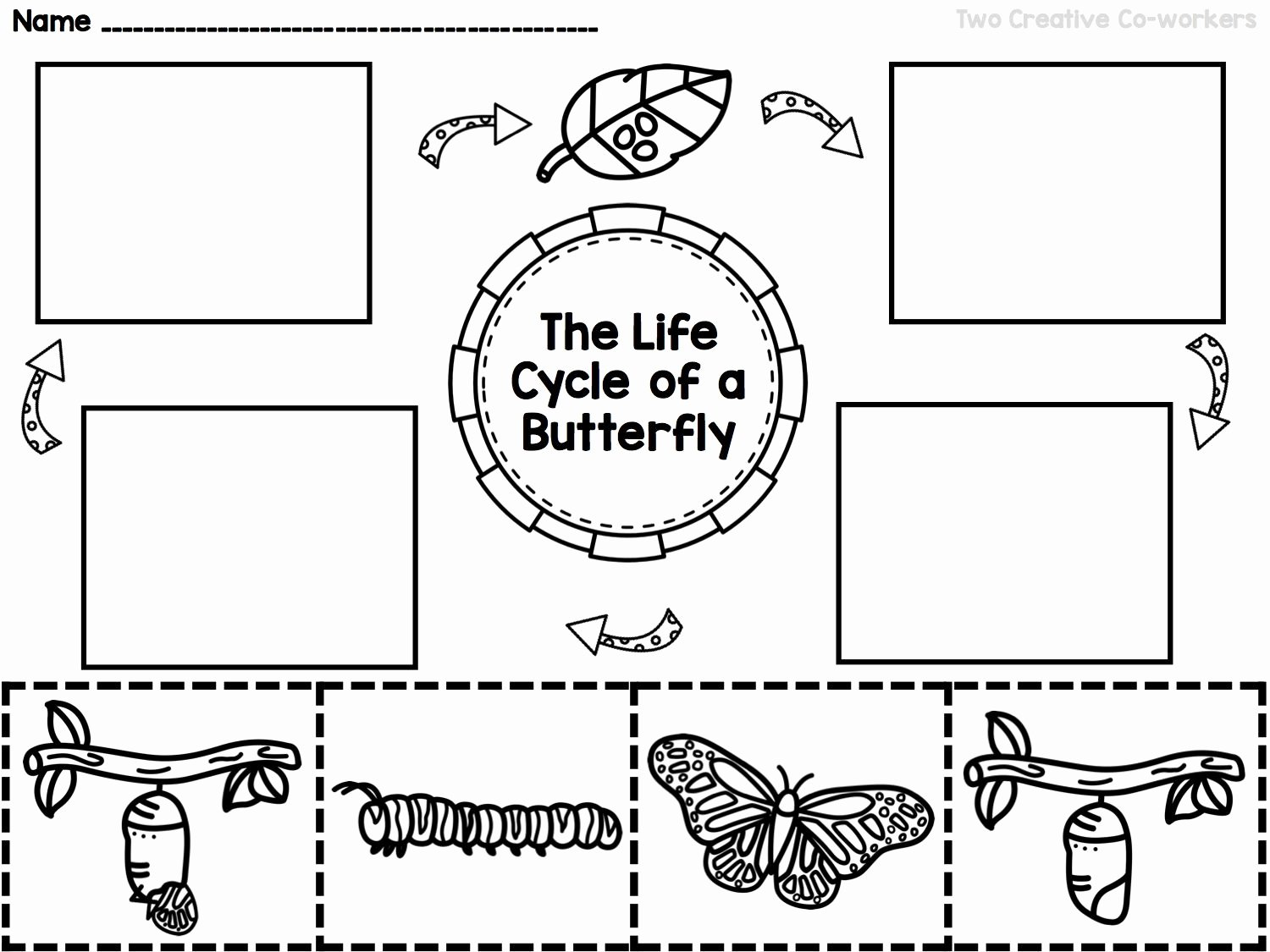 Butterfly Life Cycle Worksheet Unique the Life Cycle Of A butterfly Printable Mini Book