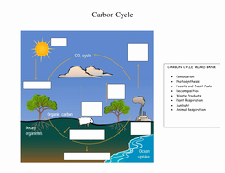 Carbon Cycle Diagram Worksheet Elegant Carbon Cycle and Green House Effect Activities by