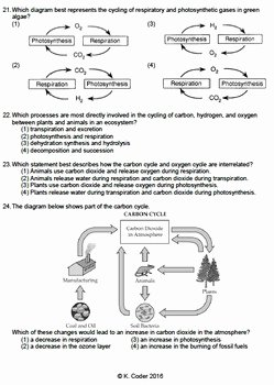 Carbon Cycle Diagram Worksheet Fresh Worksheet Carbon Oxygen Cycle Editable
