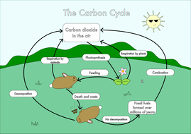 Carbon Cycle Diagram Worksheet Luxury Gcse Carbon Cycle Worksheets and A3 Wall Posters by