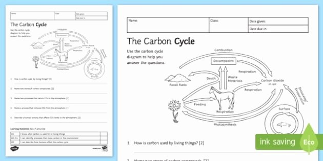Carbon Cycle Diagram Worksheet New Blank Carbon Cycle Diagram Worksheet 2019