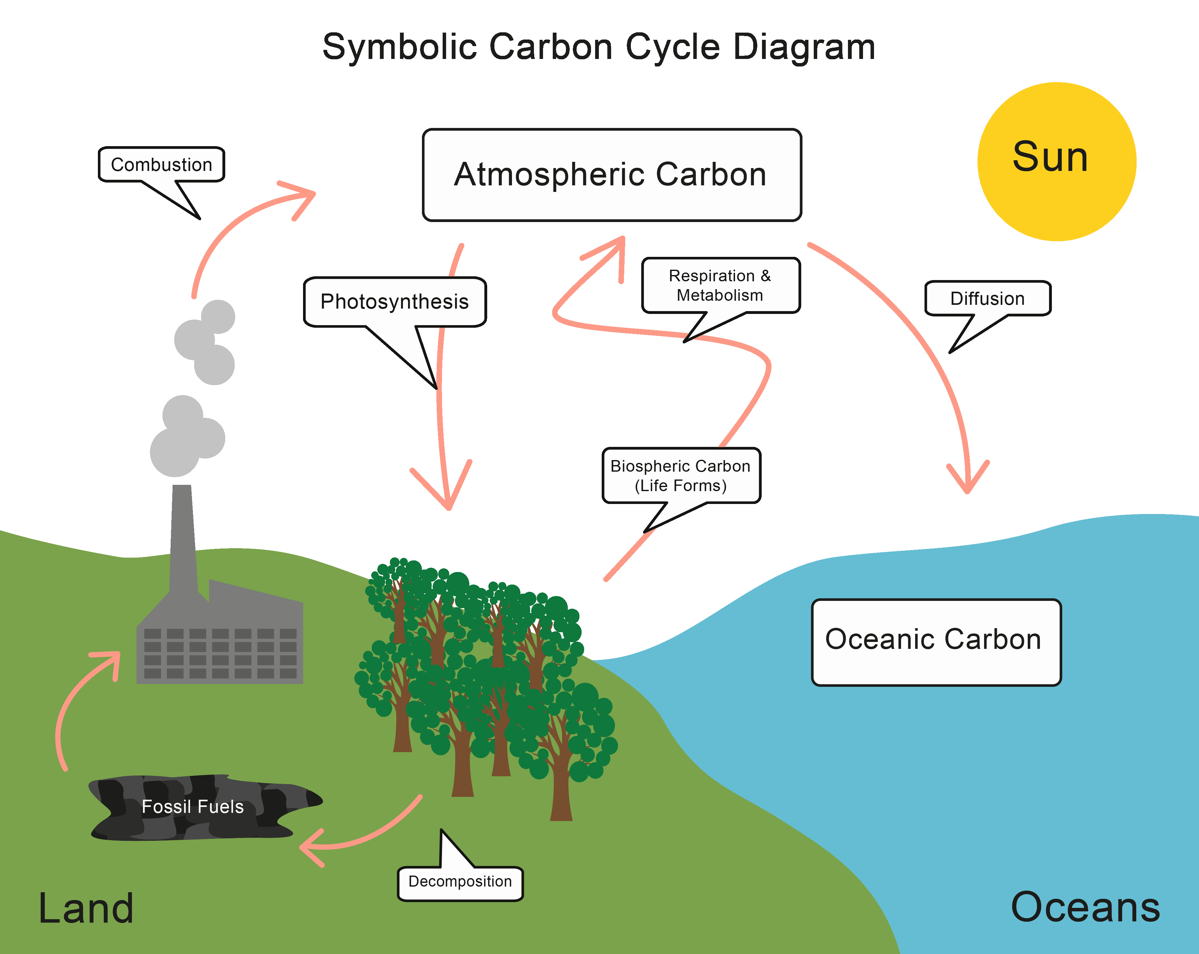 Carbon Cycle Diagram Worksheet New Worksheet Carbon Cycle Diagram Worksheet Grass Fedjp