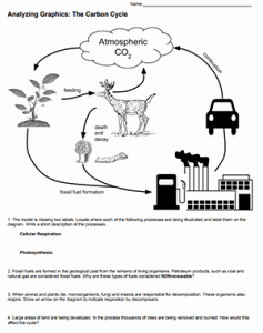 Carbon Cycle Diagram Worksheet Unique Analyzing Graphics the Carbon Cycle