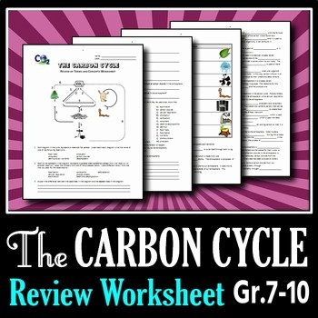 Carbon Cycle Worksheet Answers Beautiful the Carbon Cycle Review Worksheet Editable by Tangstar