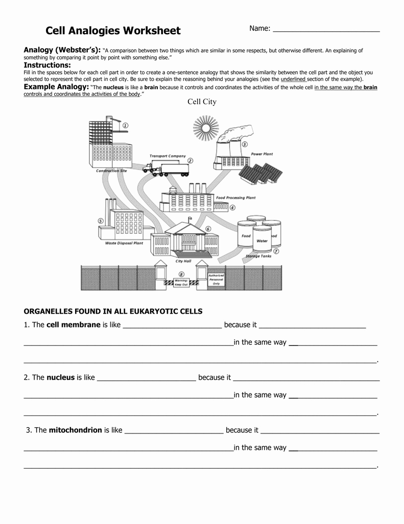 Cell City Analogy Worksheet Answers Beautiful Cell Analogies Worksheet