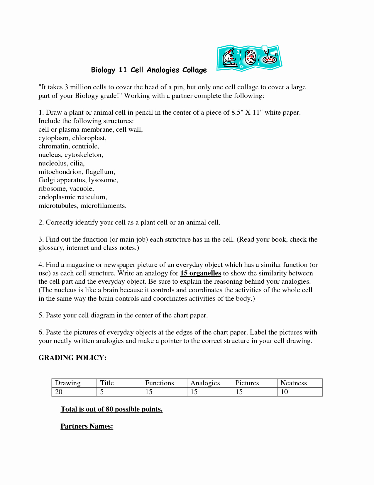 Cell City Analogy Worksheet Answers Best Of 18 Best Of Cell City Worksheet Answer Key Cell
