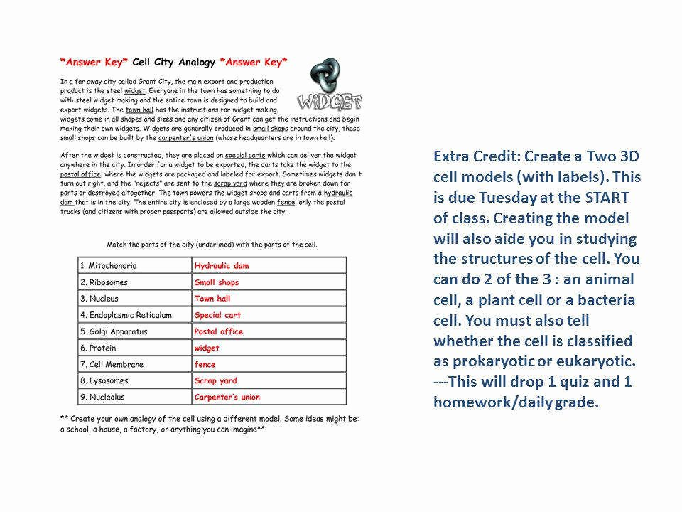 Cell City Analogy Worksheet Answers Elegant Cell City Analogy Worksheet