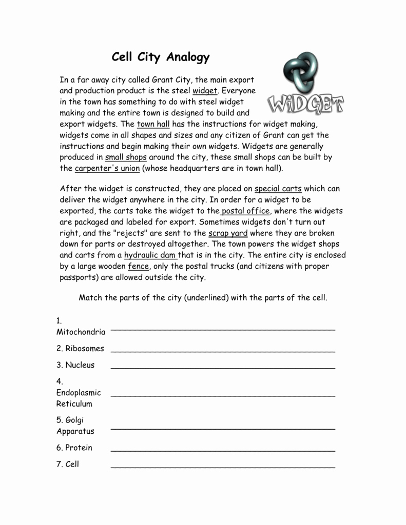 Cell City Analogy Worksheet Answers Inspirational Cell City Analogy Worksheet Wid Answer Key