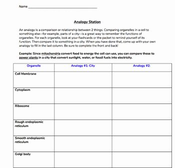 Cell City Analogy Worksheet Answers Inspirational Cell organelle Analogy Graphic organizer & Answer Key by