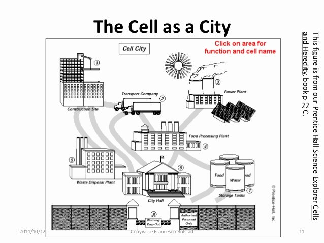 Cell City Analogy Worksheet Elegant Presenting with Analogy and Metaphor