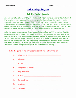 Cell City Analogy Worksheet Inspirational Cell Structures