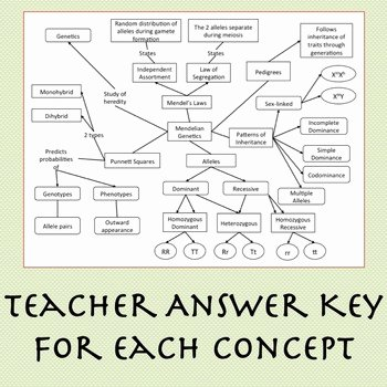 Cell Concept Map Worksheet Answers Beautiful Biology Concept Map Bundle Ecology Biochemistry Cells