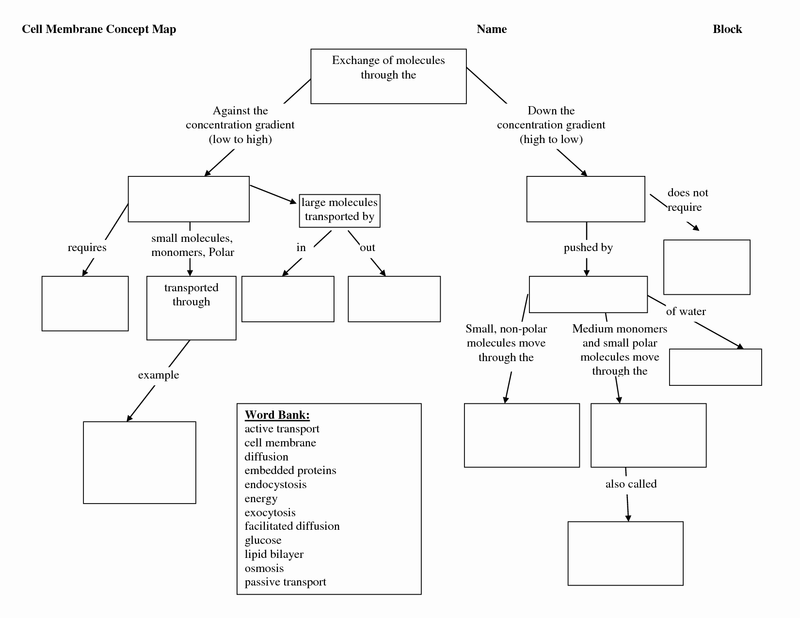 Cell Concept Map Worksheet Answers Lovely Synthesis Concept Map Worksheet Answers