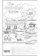Cell Cycle Coloring Worksheet Lovely the Cell Cycle Coloring Worksheet Printable Pdf