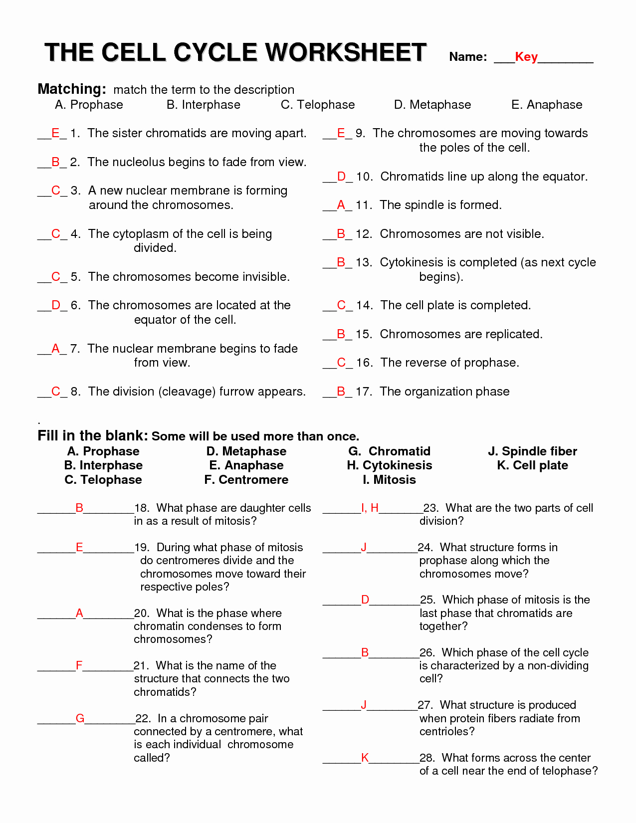 Cell Cycle Worksheet Answer Key Best Of 12 Best Of Life Science Worksheet Answer Cell