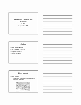 Cell Membrane Coloring Worksheet Answers Elegant Cell Membrane Answer Key