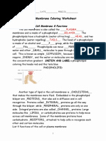 Cell Membrane Coloring Worksheet Luxury Cell Membrane Coloring Worksheet Key