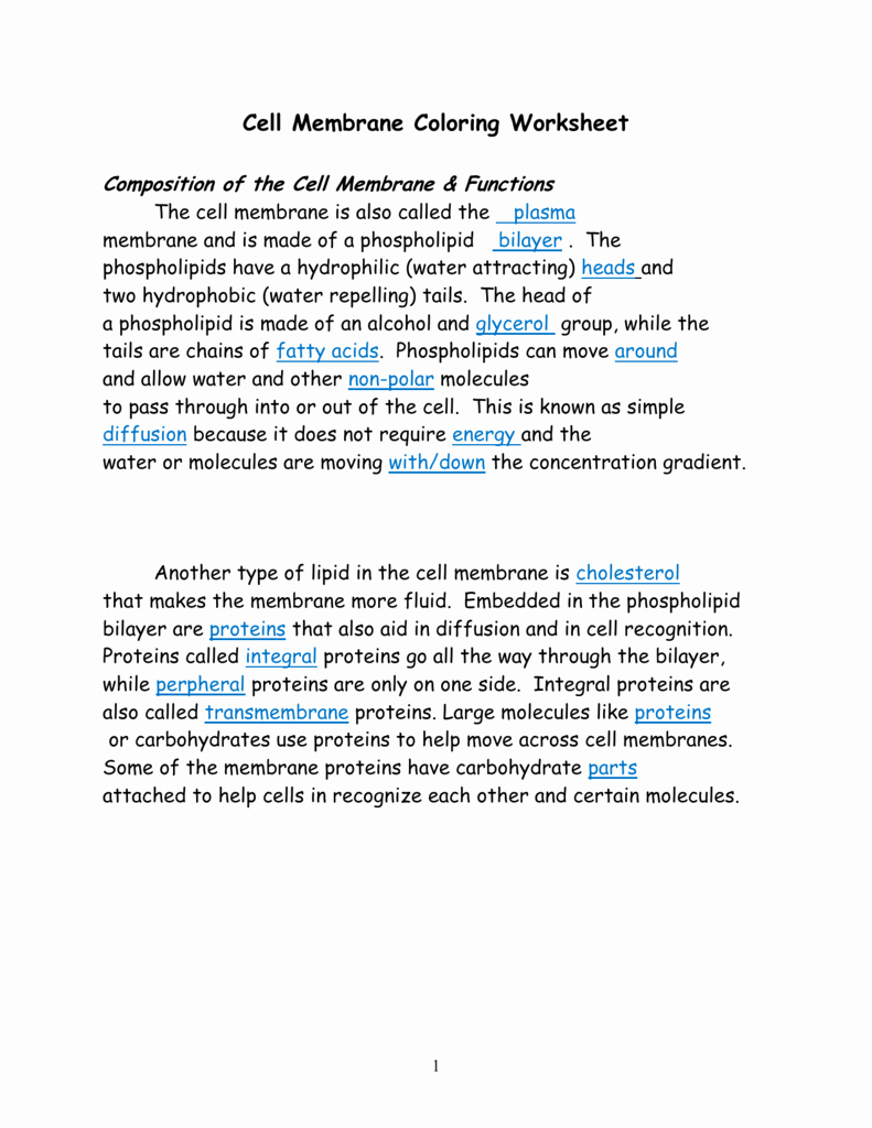 Cell Membrane Images Worksheet Answers Inspirational Cell Membrane Answer Key