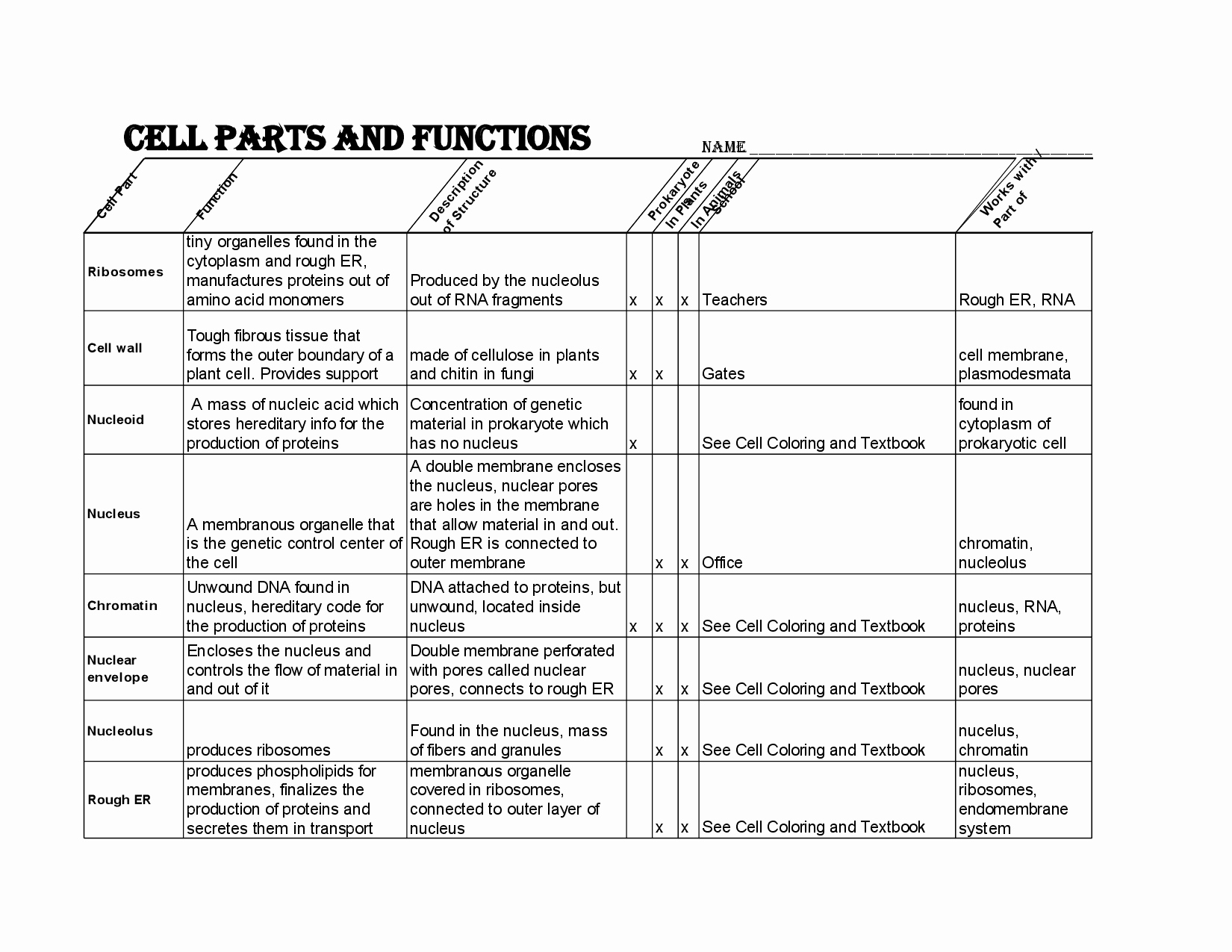 Cell Membrane Images Worksheet Answers New 12 Best Of Cell Membrane Coloring Worksheet Answers