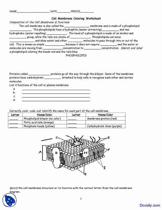 Cell Membrane Worksheet Answers Elegant Cell Membrane and tonicity Worksheet